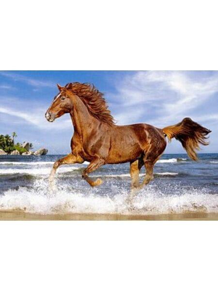 B-51175-NEW Лошадь, 500 деталей*